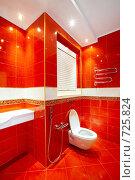Купить «Стильный туалет», фото № 725824, снято 20 января 2009 г. (c) Raev Denis / Фотобанк Лори