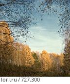 Осенний пейзаж, фото № 727300, снято 8 октября 2008 г. (c) Юрий Бельмесов / Фотобанк Лори