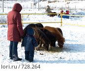 Купить «Масленичные гулянья», фото № 728264, снято 24 февраля 2009 г. (c) Оля Косолапова / Фотобанк Лори