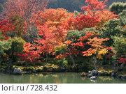 Сад храма Тенрюдзи. Арасияма, Япония (2007 год). Стоковое фото, фотограф Просенкова Светлана / Фотобанк Лори