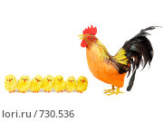 Купить «Пасхальные цыплята и петух», фото № 730536, снято 20 марта 2007 г. (c) Марианна Меликсетян / Фотобанк Лори