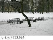 Купить «Санкт-Петербург. Скамейки в Михайловском саду зимой», фото № 733624, снято 4 марта 2009 г. (c) Александр Секретарев / Фотобанк Лори