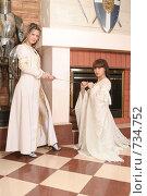 Купить «Девушки в рыцарском замке», фото № 734752, снято 8 февраля 2009 г. (c) Евгений Батраков / Фотобанк Лори