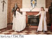 Купить «Девушки в рыцарском замке», фото № 734756, снято 8 февраля 2009 г. (c) Евгений Батраков / Фотобанк Лори