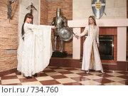 Купить «Девушки в рыцарском замке», фото № 734760, снято 8 февраля 2009 г. (c) Евгений Батраков / Фотобанк Лори
