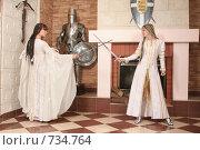 Купить «Девушки в рыцарском замке», фото № 734764, снято 8 февраля 2009 г. (c) Евгений Батраков / Фотобанк Лори