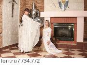 Купить «Девушки в рыцарском замке», фото № 734772, снято 8 февраля 2009 г. (c) Евгений Батраков / Фотобанк Лори