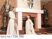 Купить «Девушки в рыцарском замке», фото № 734780, снято 8 февраля 2009 г. (c) Евгений Батраков / Фотобанк Лори