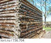Сборка деревянного сруба. Стоковое фото, фотограф Василий Кореньков / Фотобанк Лори