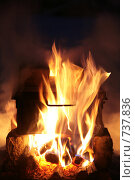 Купить «Языки пламени», фото № 737836, снято 3 января 2009 г. (c) Дмитрий Золотарев / Фотобанк Лори