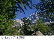 Купить «Вид на остроконечную горную вершину Пти Дрю в Альпах. ( Шамони,Франция )», фото № 742968, снято 18 сентября 2004 г. (c) Gagara / Фотобанк Лори