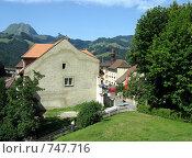 Купить «Деревушка Грюйер - родина швейцарского сыра. На заднем плане - Альпы», фото № 747716, снято 25 июля 2008 г. (c) Светлана Кудрина / Фотобанк Лори