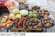 Купить «Уличная торговля. Овощи», фото № 751044, снято 7 марта 2009 г. (c) FotograFF / Фотобанк Лори