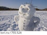 Купить «Снежный парень», фото № 755524, снято 9 марта 2009 г. (c) Леонид Селивёрстов / Фотобанк Лори