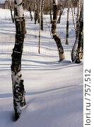 Купить «Зимний пейзаж», фото № 757512, снято 14 марта 2009 г. (c) Юрий Бельмесов / Фотобанк Лори