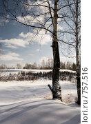 Купить «Зимний пейзаж», фото № 757516, снято 14 марта 2009 г. (c) Юрий Бельмесов / Фотобанк Лори