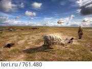 Купить «Полуостров Ямал. Тундра», фото № 761480, снято 20 апреля 2018 г. (c) Вадим Морозов / Фотобанк Лори