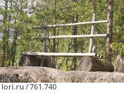Купить «Скамья», фото № 761740, снято 21 июля 2008 г. (c) Таисия Черемных / Фотобанк Лори