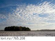 Купить «Облачное небо.     Поле с лесом покрытое снегом», фото № 765208, снято 30 октября 2005 г. (c) Aleksander Kaasik / Фотобанк Лори