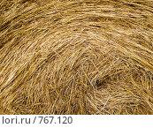 Купить «Скошенное сено», фото № 767120, снято 3 августа 2008 г. (c) Юрий Бельмесов / Фотобанк Лори