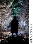Купить «Черный силуэт», фото № 769376, снято 12 декабря 2008 г. (c) Фурсов Алексей / Фотобанк Лори