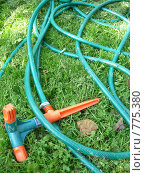 Купить «Поливочный шланг на зеленой траве», фото № 775380, снято 24 сентября 2006 г. (c) Илюхина Наталья / Фотобанк Лори