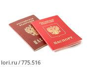 Купить «Два паспорта гражданина РФ - общегражданский и заграничный», фото № 775516, снято 28 марта 2009 г. (c) Игорь Дашко / Фотобанк Лори