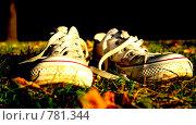Купить «Кеды», фото № 781344, снято 13 августа 2018 г. (c) Илюхин Илья / Фотобанк Лори