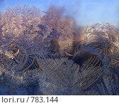Купить «Морозные узоры», фото № 783144, снято 15 января 2009 г. (c) Екатерина Шелыганова / Фотобанк Лори