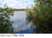Купить «Отражение в реке», фото № 786104, снято 1 августа 2008 г. (c) Елена Азарнова / Фотобанк Лори