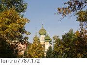 Купить «Вид на купола церкви Благовещения Пресвятой Богородицы в Санкт-Петербурге», фото № 787172, снято 13 ноября 2018 г. (c) Полина Столбушинская / Фотобанк Лори