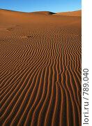 Купить «Поверхность дюны», фото № 789040, снято 6 января 2008 г. (c) Оксана Борц / Фотобанк Лори