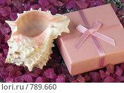 Купить «Розовая коробочка с бантом и ракушка», фото № 789660, снято 30 марта 2009 г. (c) Игорь Соколов / Фотобанк Лори