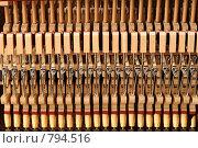 Купить «Устройство пианино», фото № 794516, снято 22 марта 2009 г. (c) Сергей Разживин / Фотобанк Лори
