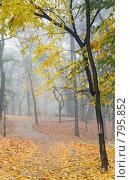 Осенний парк. Стоковое фото, фотограф Юрий Брыкайло / Фотобанк Лори