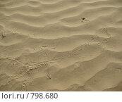 Пески (2009 год). Стоковое фото, фотограф Екатерина Петрова / Фотобанк Лори