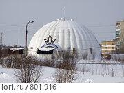 Купить «Дельфинарий», фото № 801916, снято 25 марта 2009 г. (c) Parmenov Pavel / Фотобанк Лори