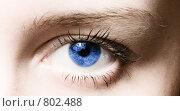 Купить «Человеческий глаз», фото № 802488, снято 19 ноября 2008 г. (c) Валерия Потапова / Фотобанк Лори