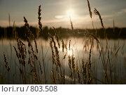 Купить «Сиверское озеро, закат», фото № 803508, снято 10 августа 2008 г. (c) Vladimir Rogozhnikov / Фотобанк Лори
