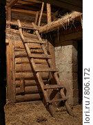 Купить «Деревянная лестница на сеновал», фото № 806172, снято 10 апреля 2009 г. (c) Иван Авдеев / Фотобанк Лори
