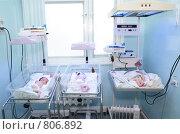 Купить «Новорожденные», фото № 806892, снято 22 января 2009 г. (c) Анатолий Типляшин / Фотобанк Лори