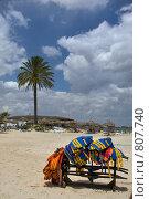 Купить «В побережье одинокая пальма и спасающие жилеты», фото № 807740, снято 20 мая 2008 г. (c) Aleksander Kaasik / Фотобанк Лори