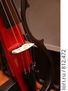 Купить «Фрагмент виолончели», фото № 812472, снято 24 февраля 2018 г. (c) Losevsky Pavel / Фотобанк Лори