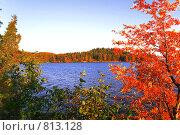 Озеро. Осень. Стоковое фото, фотограф Павел Власов / Фотобанк Лори