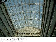 Купить «Стеклянная крыша», фото № 813324, снято 6 июня 2007 г. (c) Литова Наталья / Фотобанк Лори