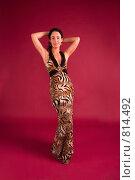 Купить «Красивая молодая женщина в вечернем платье», фото № 814492, снято 25 февраля 2009 г. (c) Олег Тыщенко / Фотобанк Лори