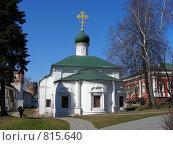 Купить «Новодевичий монастырь. Москва», эксклюзивное фото № 815640, снято 9 апреля 2009 г. (c) lana1501 / Фотобанк Лори