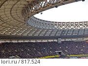 Купить «Под крышей стадиона», фото № 817524, снято 29 марта 2009 г. (c) Купченко Владимир Михайлович / Фотобанк Лори