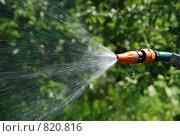 Шланг, распыляющий воду. Стоковое фото, фотограф Татьяна Князева / Фотобанк Лори