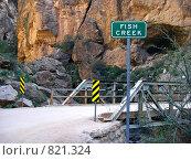 Купить «Каньон Фиш Крик. Мост через ущелье», фото № 821324, снято 19 марта 2009 г. (c) Shawn A. Nelson / Фотобанк Лори
